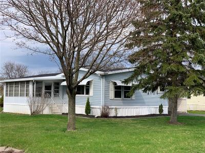 Victor Single Family Home A-Active: 6438 Kims Drive #173