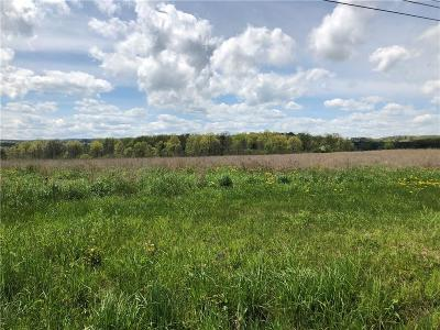 Commercial For Sale: State Route 14 Highway