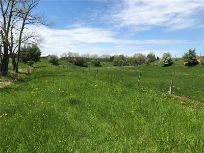Residential Lots & Land For Sale: County Road 14