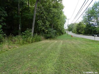 Canandaigua, Canandaigua-city, Canandaigua-town Residential Lots & Land For Sale: West Lake Road, Lot #1
