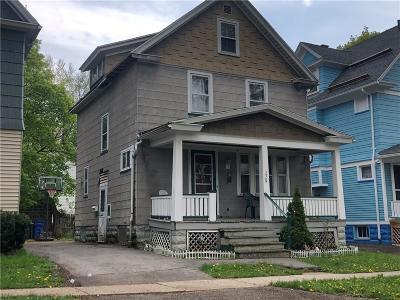 Rochester Single Family Home For Sale: 229 Durnan Street