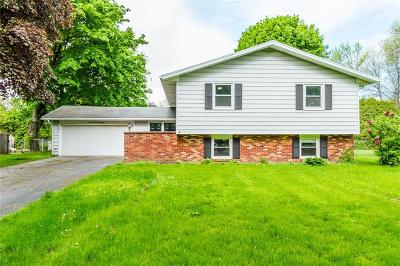 Rochester Single Family Home A-Active: 169 Jamestown