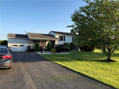 Single Family Home For Sale: 2114 Pinckney Road