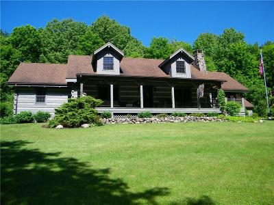 Perinton Single Family Home For Sale: 695 Victor Road