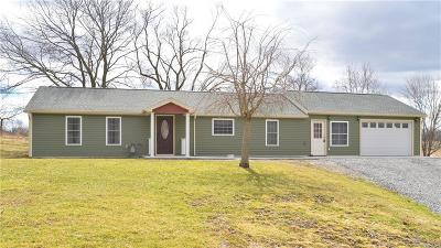 Gorham Single Family Home For Sale: 4637 State Route 245