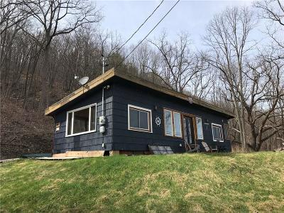 Naples Single Family Home A-Active: 7210 State Route 21