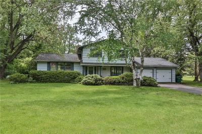 Rush Single Family Home For Sale: 2065 Rush Mendon Road