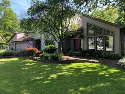 Pittsford Single Family Home For Sale: 11 Stefenage Court