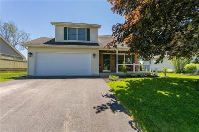 Orleans County, Monroe County, Niagara County, Erie County Single Family Home U-Under Contract: 790 Guinevere Drive