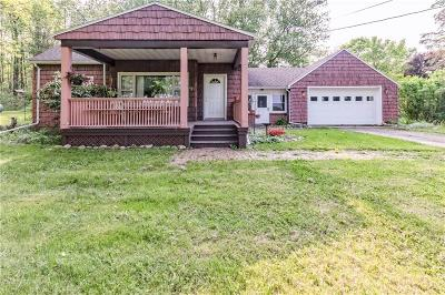 Genesee County Single Family Home For Sale: 10504 Gillate Road