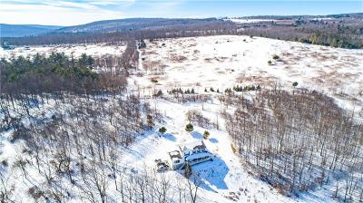 Canandaigua, Canandaigua-city, Canandaigua-town Residential Lots & Land For Sale: 00 Co Road 16