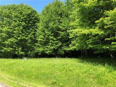 Residential Lots & Land For Sale: Chautauqua-Stedman Road