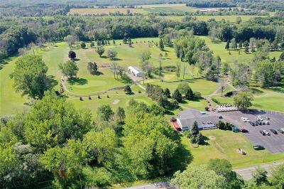 Residential Lots & Land A-Active: 1175 Ogden-Parma Tl Road