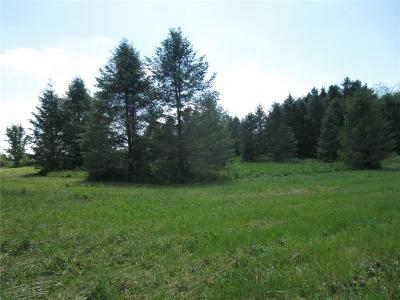 Residential Lots & Land A-Active: 00 Rt. 488