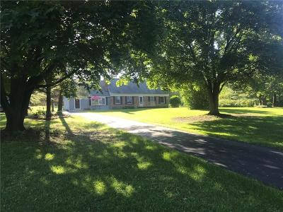 East Bloomfield Single Family Home For Sale: 2128 Pond Road