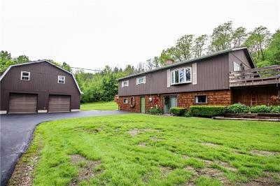 Single Family Home For Sale: 3948 Daily Hill Road