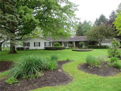 Pittsford Single Family Home For Sale: 6 Old Acre Lane