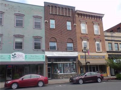 Commercial For Sale: 38 Seneca Street