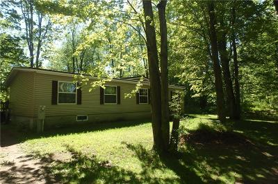 Single Family Home For Sale: 9280 Blind Sodus Bay Road