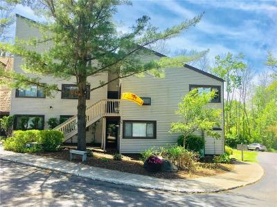 Chautauqua NY Condo/Townhouse For Sale: $157,500