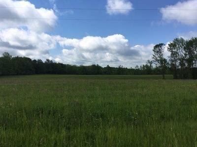 Arkwright NY Farm & Ranch For Sale: $125,000