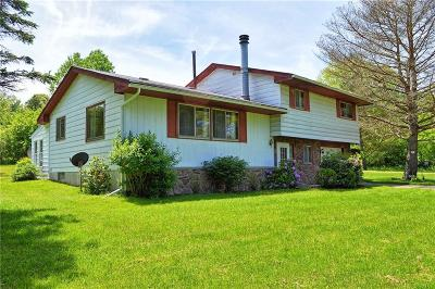 Busti NY Single Family Home For Sale: $135,000