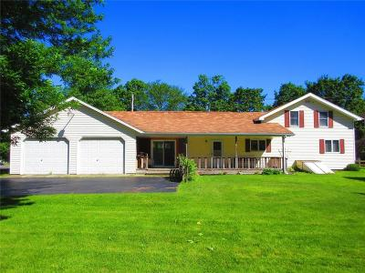 Single Family Home For Sale: 8269 Route 5 Highway