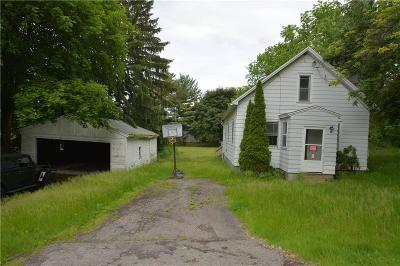 Perinton Single Family Home For Sale: 16 Thayer Road