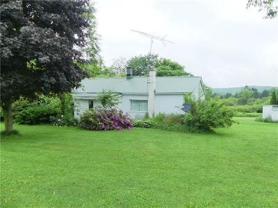 Single Family Home For Sale: 9760 Route 242