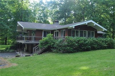 Single Family Home For Sale: 5970 State Route 90