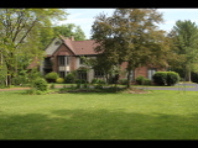 Single Family Home For Sale: 21 Trout Creek
