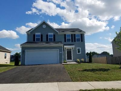 Farmington Single Family Home For Sale: 5931 Kennebec Court