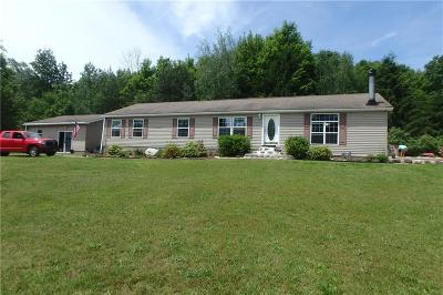 Single Family Home For Sale: 963 State Route 104a #A