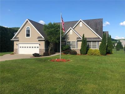 Cattaraugus County Single Family Home For Sale: 2500 Five Mile Road