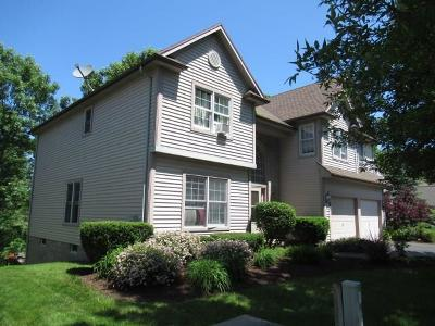 Macedon Single Family Home For Sale: 1295 Fairway 7