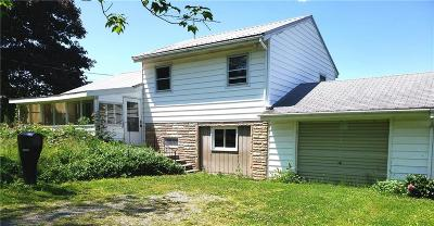 Cattaraugus County Single Family Home For Sale: 11412 Route 39