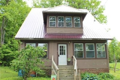 Allegany Single Family Home For Sale: 648 Route 16