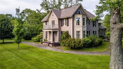 Perinton Single Family Home For Sale: 249 S Main Street