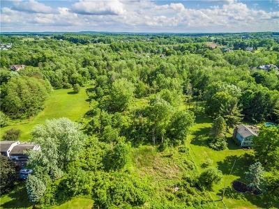 Pittsford Residential Lots & Land For Sale: 49 Van Voorhis Road