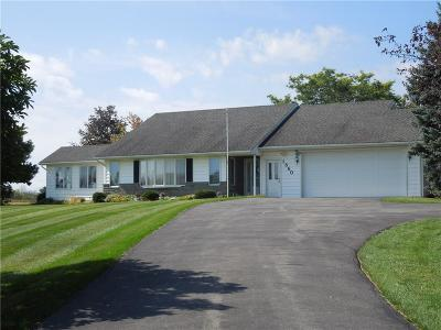 Single Family Home For Sale: 1860 County Road 8