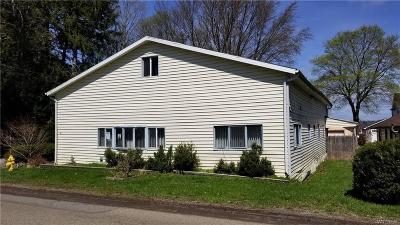 Single Family Home For Sale: 143 E Terrace Avenue