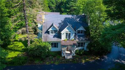 Portville Single Family Home For Sale: 65 Temple Street