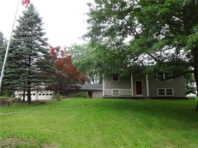 East Bloomfield Single Family Home For Sale: 6700 Rice Road