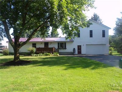 Waterloo NY Single Family Home For Sale: $179,000