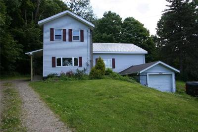 Findley Lake Single Family Home For Sale: 10341 Main Street
