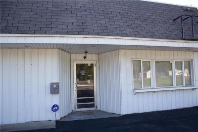 Manchester NY Commercial For Sale: $89,000