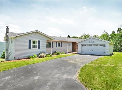 Naples Single Family Home For Sale: 6233 State Route 21