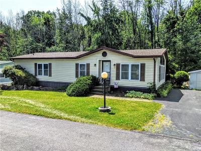 Genesee County Single Family Home For Sale: 45 Hidden Meadows Drive