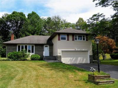 Henrietta Single Family Home For Sale: 146 Clearview Drive