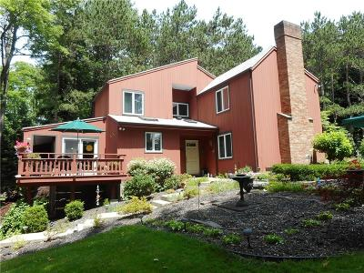 Webster Single Family Home For Sale: 594 Drumm Road